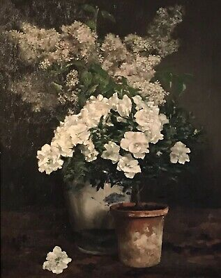 Fine 1890's Large French Impressionist Signed Oil - White Flowers Terracotta Pot