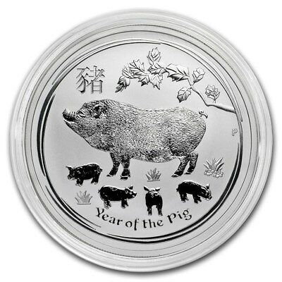 2019 ~ 1~OZ .9999 SILVER ~ LUNAR YEAR of the PIG ~ PERTH MINT ~ GEM COIN ~ $9.99