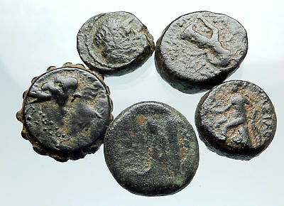 AUTHENTIC Ancient 400BC-250AD GREEK - 5 COINS Group Lot KIT Collection i74932
