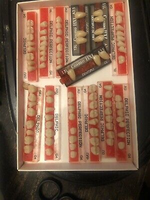 Vintage Dental Denture Acrylic Teeth Crafts Or Spare Repairs Weird Curio