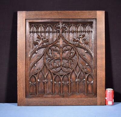 *Large French Antique Gothic Revival Panel in Oak Wood Salvage