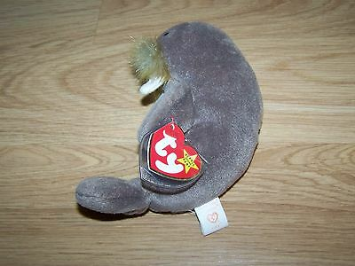 TY Beanie Baby Jolly the Walrus 1996 with Tags Retired Bean Bag Toy Plush