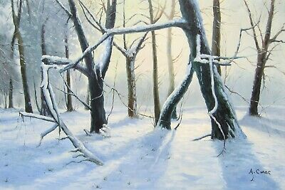 "Sunny Winter Day original E European oil painting by Andrey Stas 24x36"" 62x92 cm"