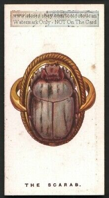 Ancient Egyptian Scarab Beetle Symbol  Original 1920s Trade Card