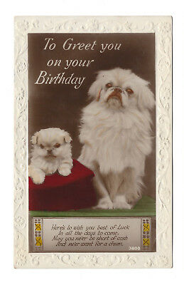 Vintage RP Birthday Greeting Postcard Pekingese Dogs Postal Union Congress 1929