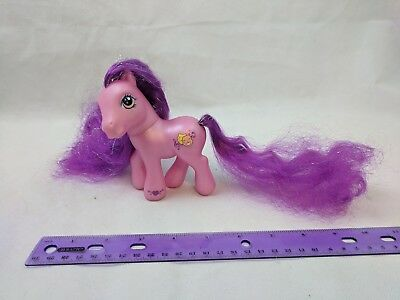 My Little Pony SILVER SONG Purple Theater Super Long Hair Pony G3 Hasbro