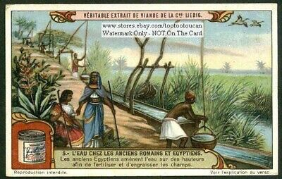 Ancient Egyptians Fertilize Fields c1920 Trade Ad Card