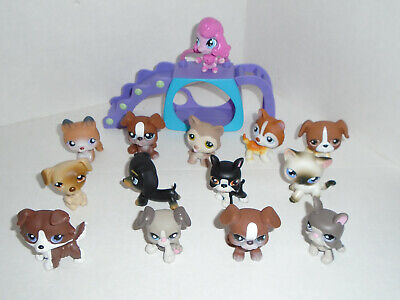 LITTLEST PET SHOP LPS Lot of Dogs and 1 Cat