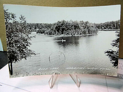 RPPC Photo Postcard Budd Lake Harrison Michigan MI