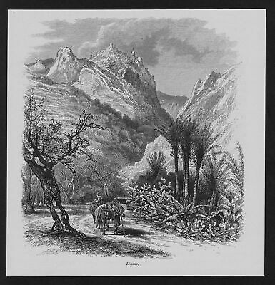 1880 - Limino Sizilien Bauer Italien Italia Italy Original Holzstich woodcut