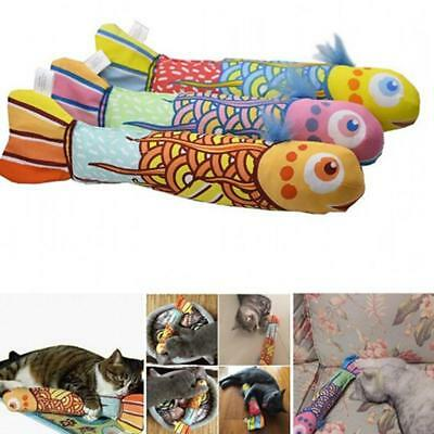 Funny Fish Shape Fancy Catnip Pillow Interactive Play Toy Pet Cat Striking D