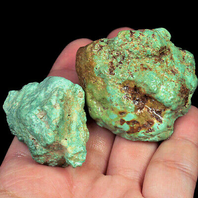 362.3Ct 100% Natural Brain Turquoise Nugget Intact Specimen YSTc1386