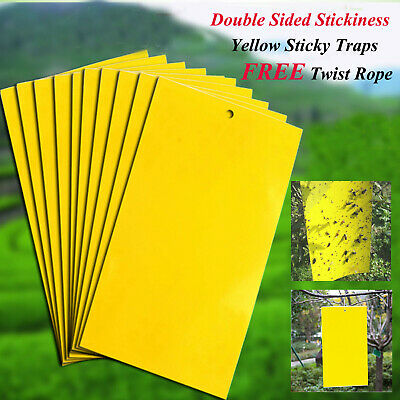 Up to 100x Yellow Greenhouse Sticky Traps Glue Catch Multiple Flying Insect Pest