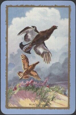 Playing Cards 1 Single Swap Card Old Vintage ENGLISH Named GROUSE Game Birds