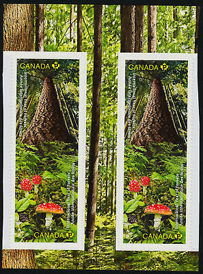 Canada 2462-3 gutter pr MNH Trees, Mushrooms, International Year of the Forests
