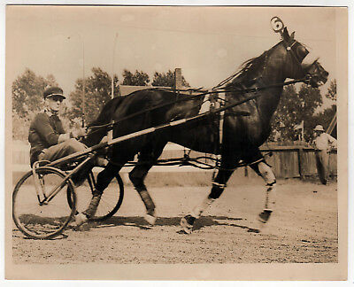 ANTIQUE Horse Racing PHOTOGRAPH Photo VINTAGE Horses HARNESS RACE Sports 1930s