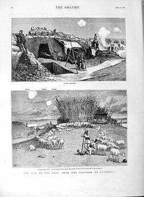 Old Antique Print 1877 War Trenches Russian Army Oltenitza Shepherd Sheep 19th