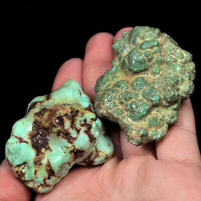 436.15Ct 100% Natural Brain Turquoise Nugget Intact Specimen YSTc1395