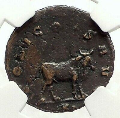 GALLIENUS Authentic Ancient Genuine 267AD Rome Animal Series BULL NGC i76866