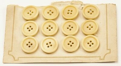 Antique Vintage 1930s Button Card Ivory/Natural Round 4 hole 19mm diameter x 12