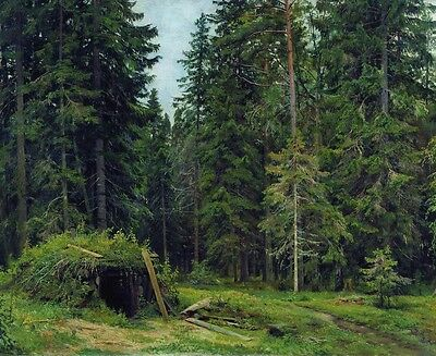 Oil painting Shishkin Ivan Ivanovich - Forest lodge in beautiful Hand painted