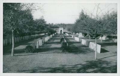 Norfolk cementery somme france. - Vintage photo