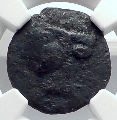 CARTHAGE Zeugitana Ancient 1st PUNIC WAR Time Ancient Greek Coin NGC i77331