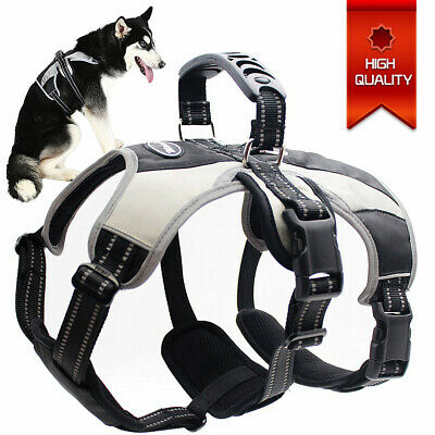Adjustable Dog Puppy Harness Vest Reflective Breathable Cat Walk Collar No Pull