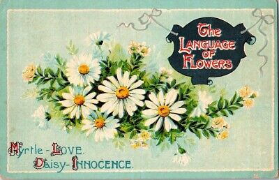 Vintage Postcard Postmarked The Language Of Flowers Daisy