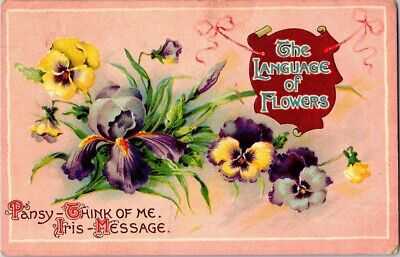 Vintage Postcard Postmarked 1910 The Language Of Flowers Pansy