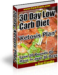 Keto Diet Ketosis Plan 30 Day Low Carb Diet   E BOOK   PDF