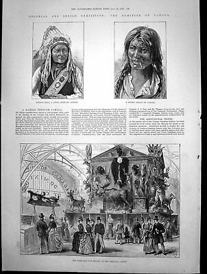 Old Antique Print Game Fur Trophy Canadian Court Swamp Indian Canada 1886 19th