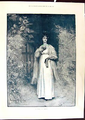 Old 1891 Devon Rose Beautiful Woman Knowles Windsor Thames Valley Flo Victorian