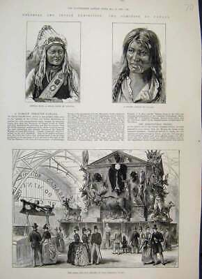 Original Old Antique Print 1886 Canada Court Game Fur Trophy Sioux Chief 19th