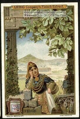 Feige Fig Women and  Fruit Mediterranean Tradition Food  c1900 Trade Ad  Card