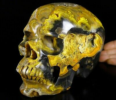 """Lifesized 7.1"""" Bumble Bee Jasper Carved Crystal Skull, Super Realistic #301"""