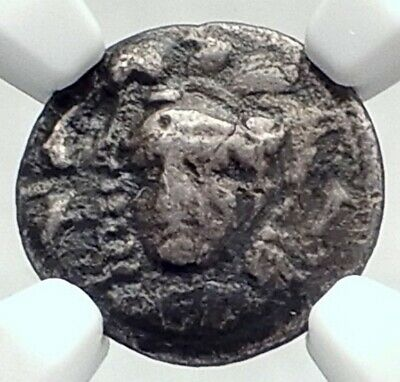 SYRACUSE Sicily RARE R2 Authentic Ancient 344BC Silver Greek Coin NGC i77393
