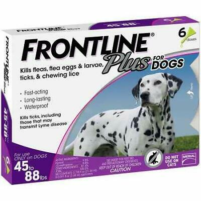 6 Doses Genuine Frontline Plus For dogs 45 ~ 88lbs, Flea & Tick Remedy 6 Month