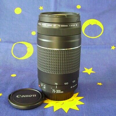 Canon Zoom Lens EF 75-300mm 1:4-5,6 III