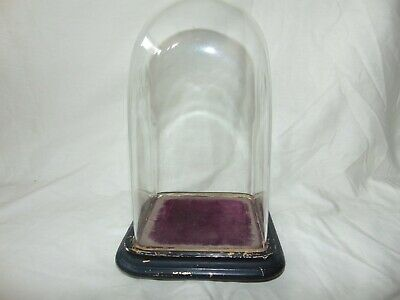 GREAT ORIGINAL ANTIQUE 1800's BLOWN GLASS DOME for CLOCK or TAXIDERMY Nice Size
