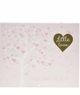 Baby First Year Calendar, Little Love by C.R. Gibson