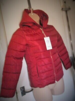 Bnwt Girls Red Padded Jacket With Hood Yingaoxuefei Xl 170/92A