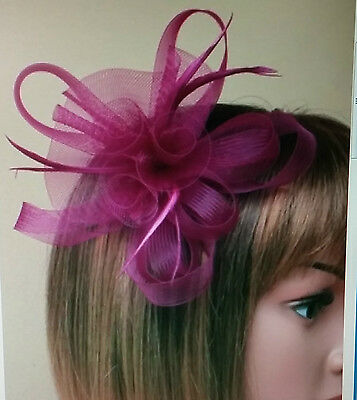 Purple Looped Net Centre Rosette & Feather Fascinator On A Clip & Brooch Pin