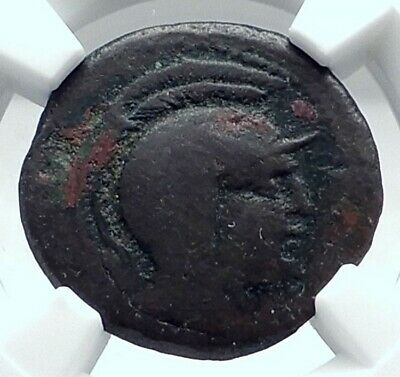 KALAKTE SICILY Authentic Ancient 125BC RARE R1 Greek Coin ATHENA OWL NGC i77610