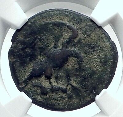 AKRAGAS SICILY Authentic Ancient 425BC Greek Coin EAGLE RABBIT CRAB NGC i77624