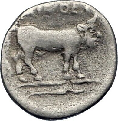 SELINOS SICILY 417BC Authentic Ancient Silver Greek Coin NYMPH MAN BULL i73523