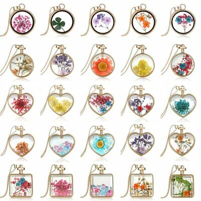 Charm Natural Real Dried Flower Round Glass Pendant Necklace Long Sweater Chain