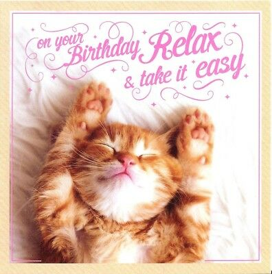 Funny Birthday Card With Cute Kitten Cat Image For A Girl Animal Lover