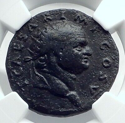 TITUS as Caesar Vespasian 76AD Rome Dupondius Ancient Roman Coin NGC i77646