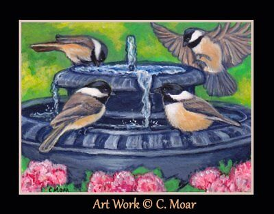 Black Capped Chickadee Bird Bath Flowers Garden ACEO Limited Ed Art Print